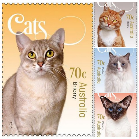 Cat stamp collection - Australia Post - Animal Eyes Photography