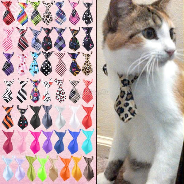 Cute Cat Bow and Tie Collars - Cat Lover's Pick - Featured in Australian National Cat Magazine Ozzi Cat