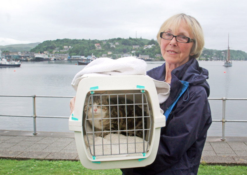 Jean Sutherland, Argyll Animal Aid with the runaway feral cat who sailed on a yacht. Photo by Kevin McGlynn, via The Scotsman