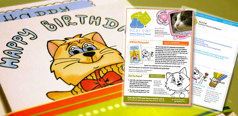 Ozzi Cat Magazine: Cat Postcards Order, Printed Issue, and Email Subscription Issue