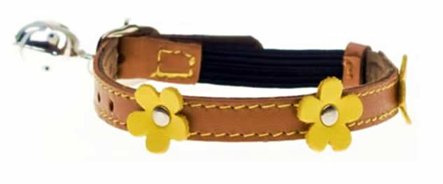Paws and Co - Cat Collar - Lucy Orange