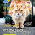 Ozzi Cat Magazine Issue #7 (Printed Copy)