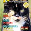 Ozzi Cat Magazine Issue #17 (Printed Copy) - (SOLD OUT)