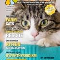 Ozzi Cat Magazine Issue #22 (Printed Copy)